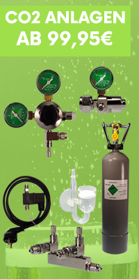 CO2 AAnlagen