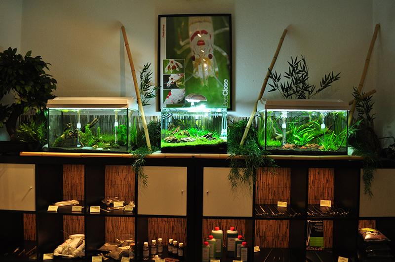 Aquaristik-Fachgeschäft