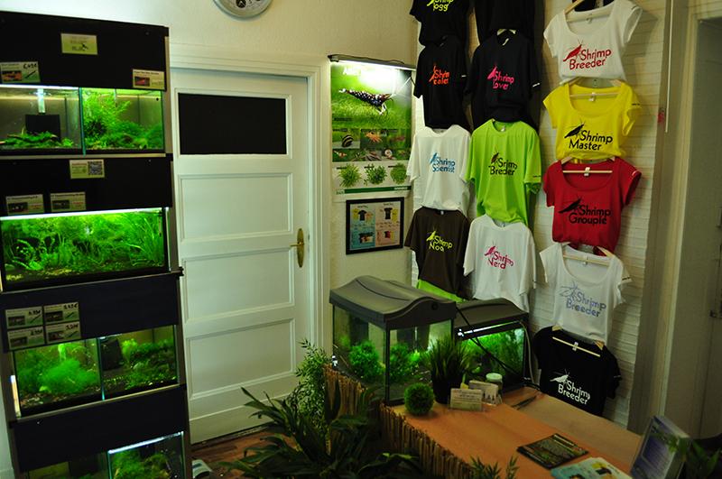 garnelen aquaristik fachgesch ft in berlin garnelen kaufen im garnelen shop. Black Bedroom Furniture Sets. Home Design Ideas
