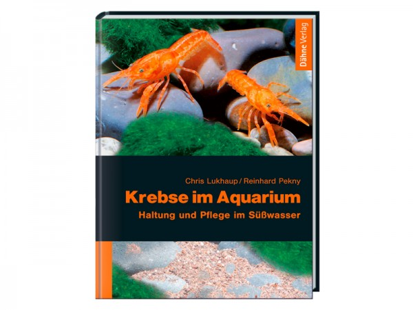 Krebse im Aquarium: Haltung und Pflege im Süßwasser