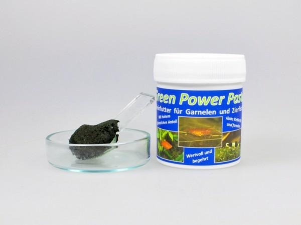 AQ4Aquaristik - Green Power Paste 70g