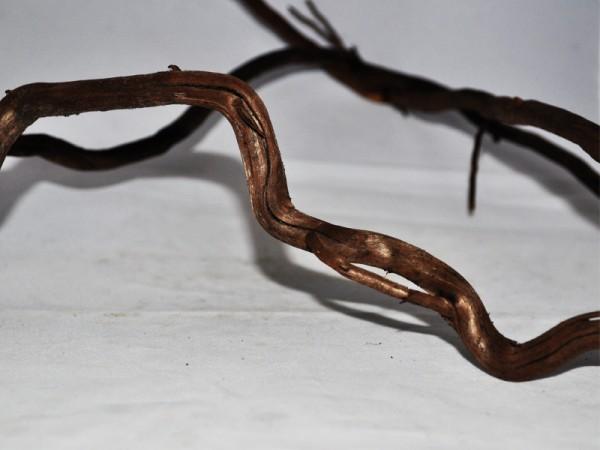 Moorkienast - Größe L