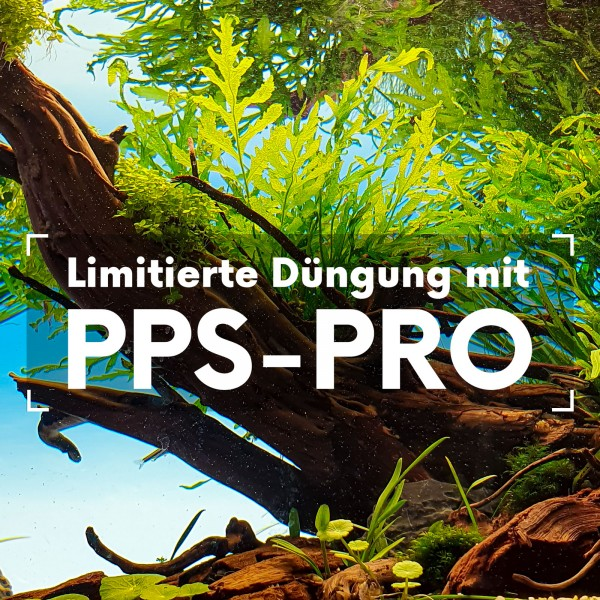 ppsprofeatured