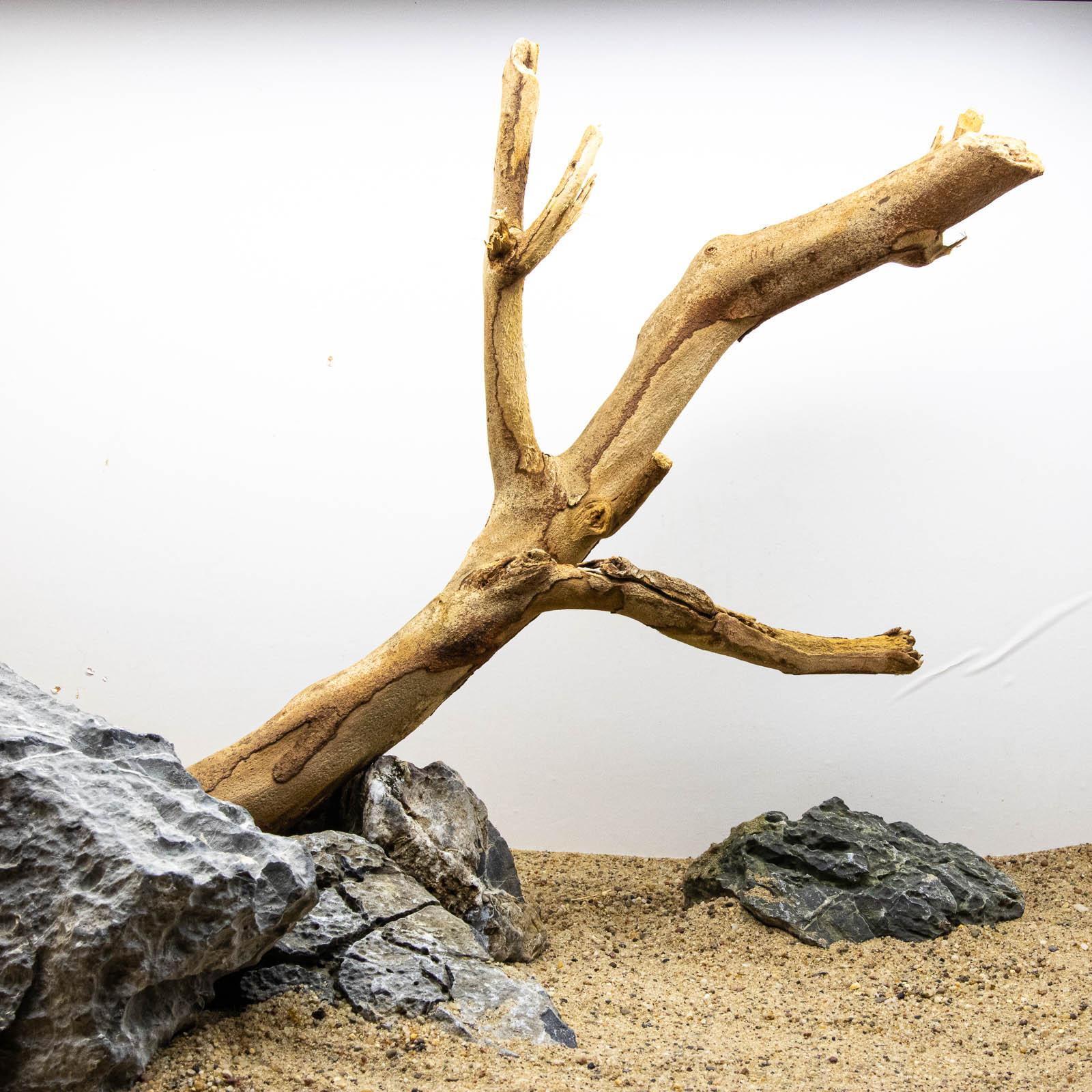 Talawa Holz - Aquarienwurzel