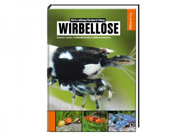Wirbellose: Garnelen, Krebse, Krabben & Schnecken im Süßwasseraquarium